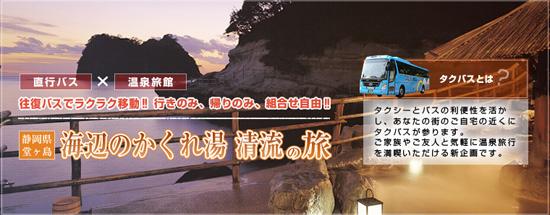 堂ヶ島 旅行 直行バスのご案内